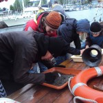 Meereskunde zum Anfassen