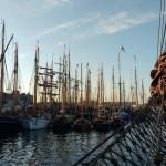 Mastwald im Flensburger Hafen